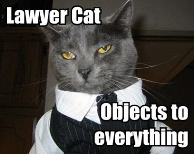 Lawyer-cat