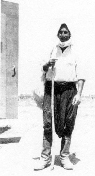 Cypriot shepherd