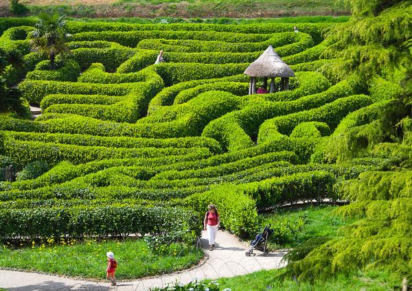 Glendurgan Gardens maze - Cornwall