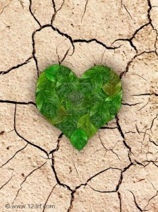 Heart-on-cracked-soil